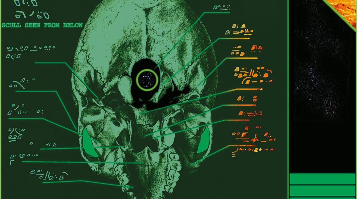 Skull Seen From Below Illustration Bernd Schimmelpfennig 1996