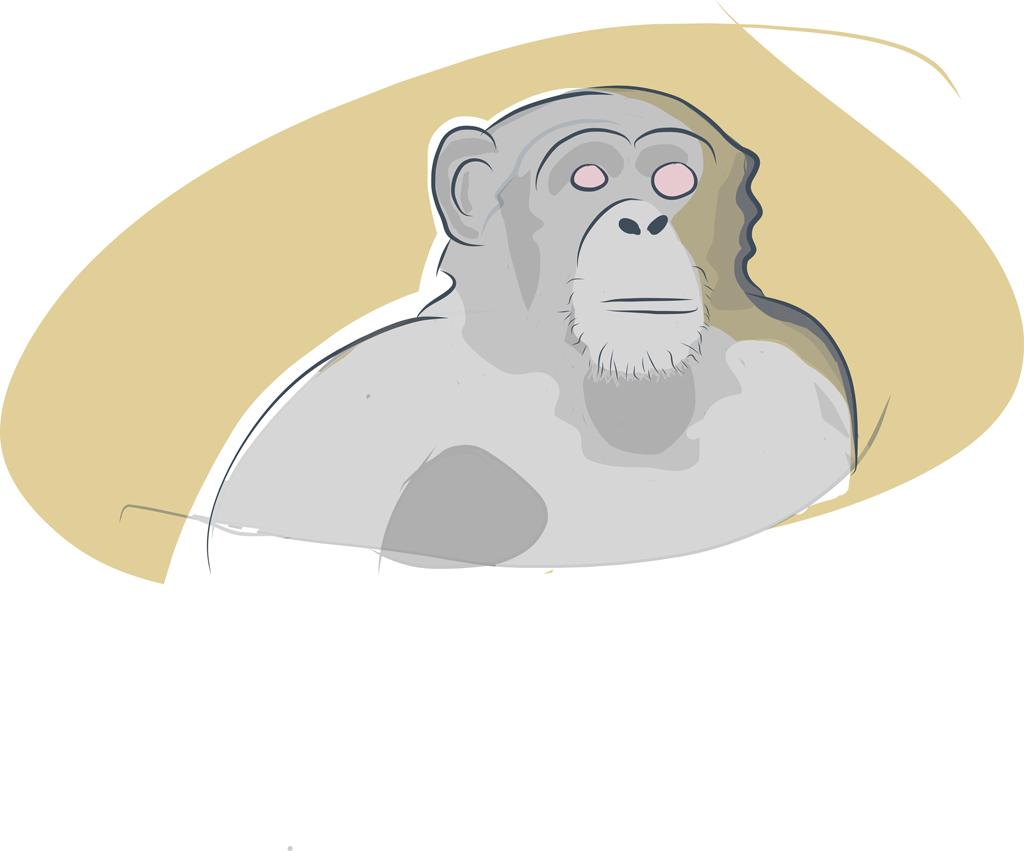 Monkey Illustration Bernd Schimmelpfennig 2013